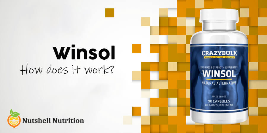 how does winsol work